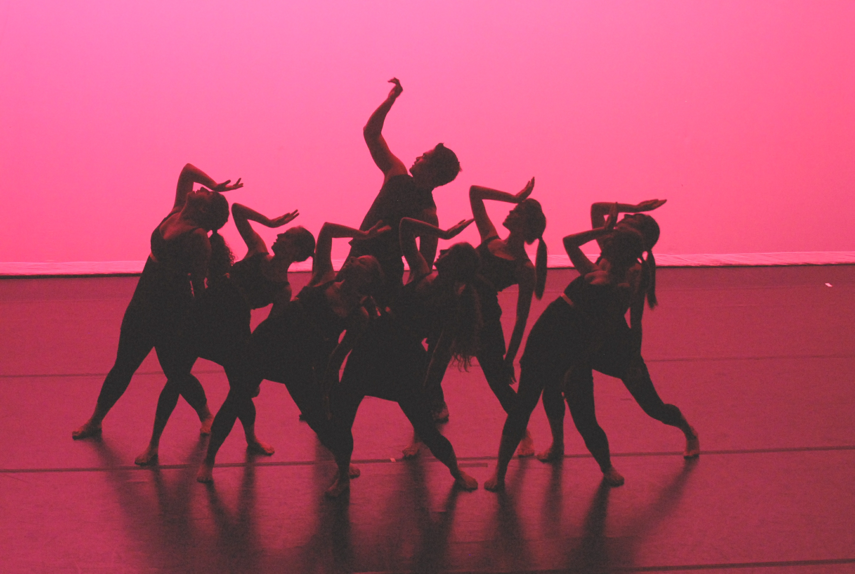 Dance groups join forces for annual benefit   Penn Gazette Arts Blog